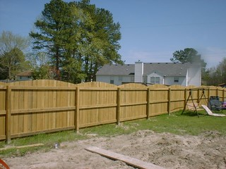 Pressure Treated Fence