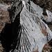 Limestone sculptures - Esculturas de caliza en el paso entre Yutanduchi de Guerrero y San Miguel Piedras, Oaxaca, Mexico por Lon&Queta