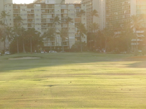 Ala Wai Golf Course 216
