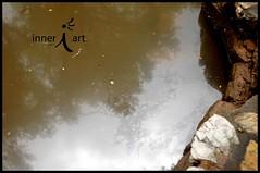 Oil Spill Sheen