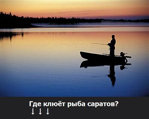 Где клюёт рыба саратов?