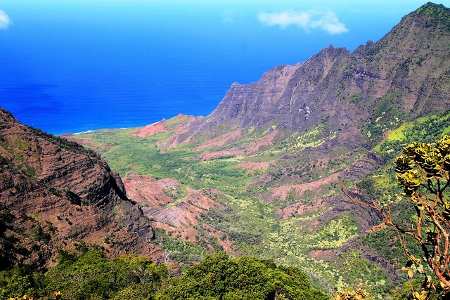 View of Kalalau Valley from the Pihea Trail