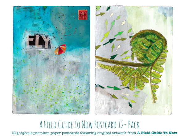 a field guide to now postcard 12 pack giveaway