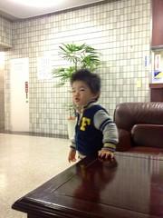 朝散歩 - 雨でロビーへ (2012/11/6)
