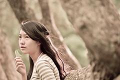 [フリー画像素材] 人物, 女性 - アジア, 人物 - 樹木 ID:201211160800