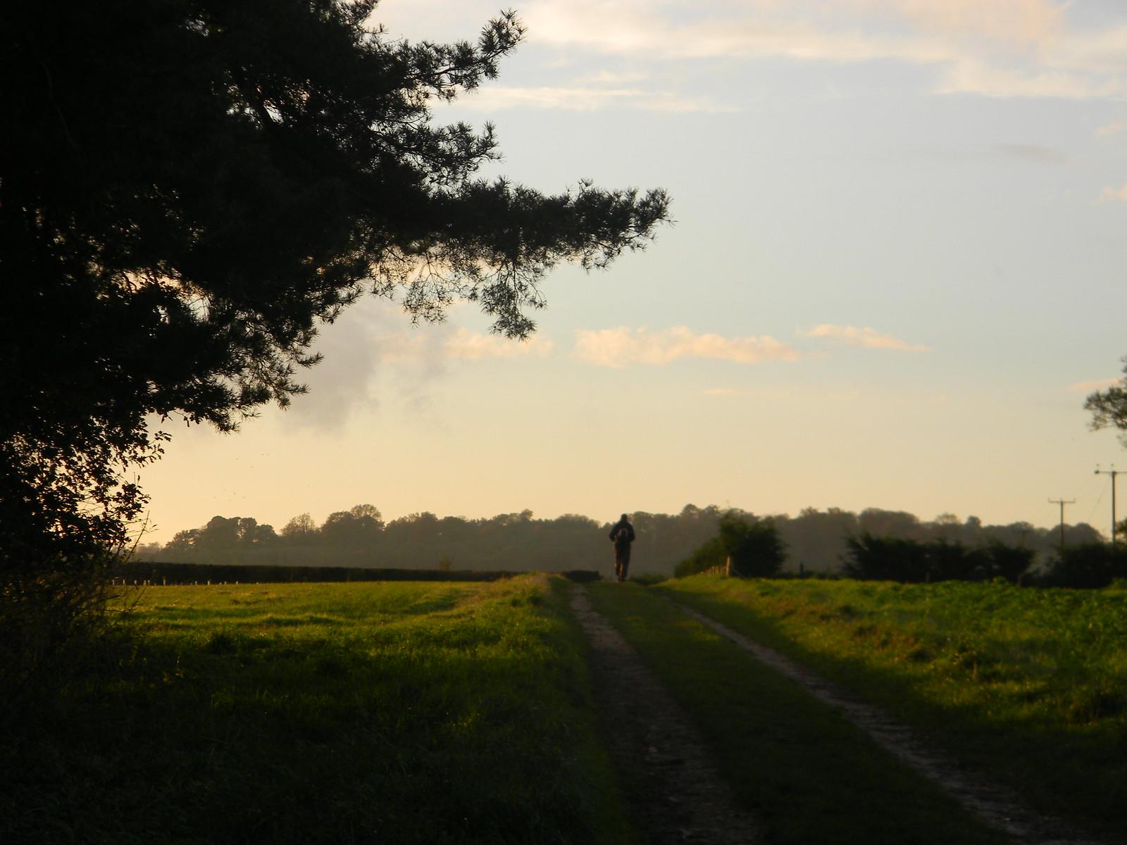 Across a field Henley Circlular via Hambleden (short)
