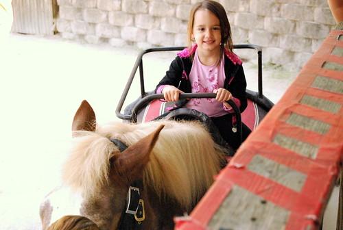 PZ - horse rides-001