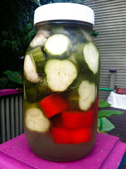 plant(0.0), produce(0.0), cucurbita(0.0), vegetable(1.0), pickled cucumber(1.0), pickling(1.0), food preservation(1.0), food(1.0), canning(1.0), cucumber(1.0),
