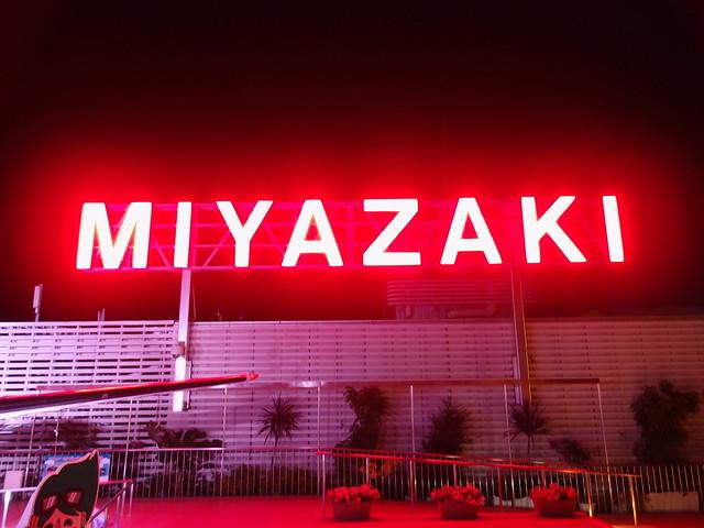Miyazaki Airport Night