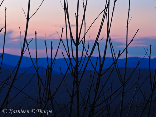 morning pink blue sky mountains silhouette sunrise quiet northcarolina stillness baldmountain newday mountainscape wolflaurel layersofcolors