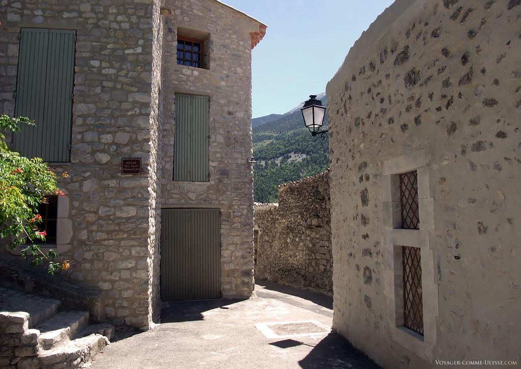 Certaines restaurations sont toutefois bien inégales, avec la pierre noyée dans le ciment. Pour info, la rue se nomme montée des faux monnayeurs.
