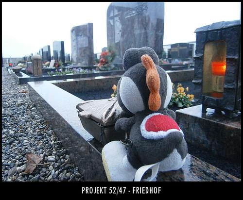 Projekt 52/47 - Friedhof