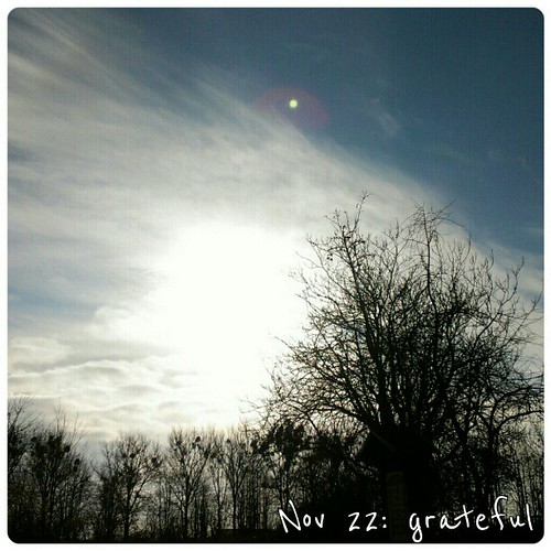 Nov 22: grateful - sunshine #fmsphotoaday #sun #sunshine #grateful