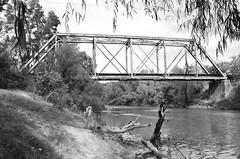 Union-Pacific Railroad Through Truss Bridge over Guadalupe River, Victoria, Texas 1211221222BW