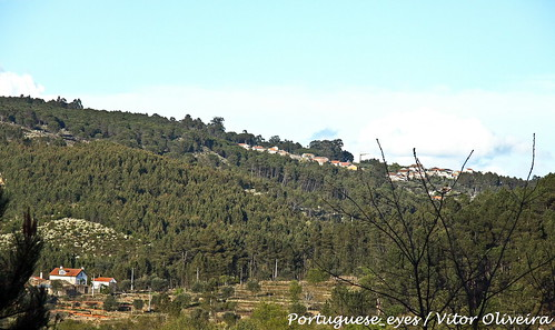Arredores do Moinhos do Dão - Portugal