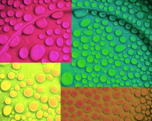 color colour drops olympus pop gotas warhol mju820