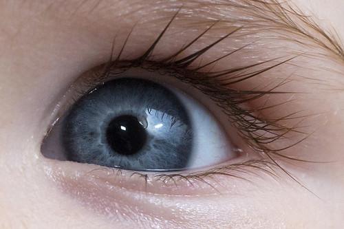 IMAGE: http://farm9.staticflickr.com/8065/8227571503_2ac378de15.jpg