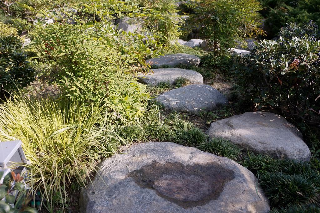 James Irvine Japanese Garden | Landscape Voice
