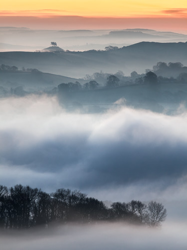 Fog in the Marshwood Vale, pre dawn, with the distinctive tree-topped Colmers Hill in the distance