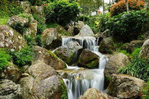 nature water rock garden landscape waterfall stream slowshutter cottoncandy greatphotographers platinumheartaward flamit allnaturesparadise