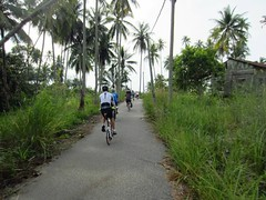 this is how the tropics look to cyclists