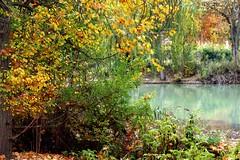 jardines de Aranjuez en otoño de 2012-104