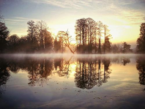 fog, daybreak