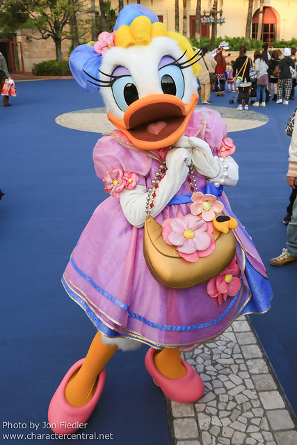 TDR Oct 2012 - Meeting Daisy