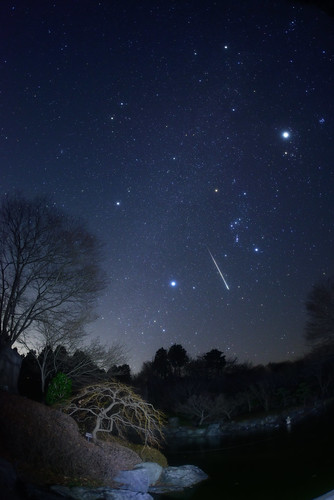 Geminids 2012 - Winter Hexagon