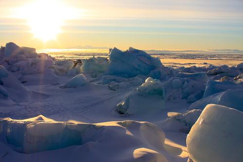 world voyage travel sea bird beach island penguin ross high reisen tour antarctica unterwegs cape polar monde latitude colony reise welt antártida adelie antarktis antarctique الجنوبية القارة 南極大陸 南极洲 القطبية