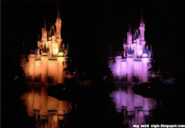 MagicKingdom 10