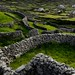 Fences on Inisheer, Aran Islands, Ireland by JC Richardson