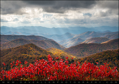 autumn trees light red sun sunlight mountains color fall nature landscape outdoors photography nationalpark nc colorful paradise vibrant scenic northcarolina fallfoliage foliage valley layers rays smoky peaks appalachia blueridgeparkway sunbeams ridges daveallen crepuscular greatsmokymountains d800 reallyrightstuff appalachians wnc gsmnp outdoorphotographer nikond800 mygearandmeplatinum mygearandmediamond