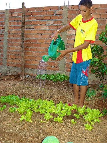 The Real Conquista Family Community Gardens Project
