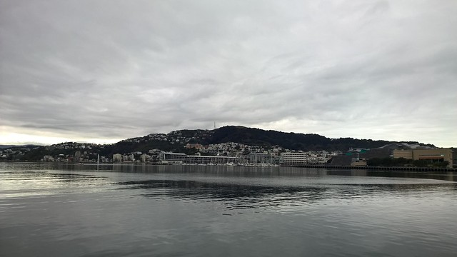 Wellington on a cloudy windless day