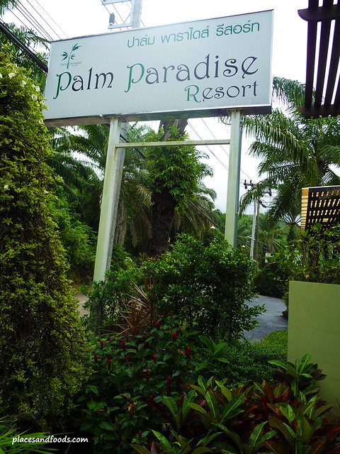 palm paradise resort krabi