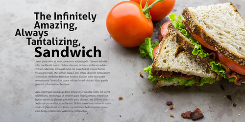 BLT Sandwich in Layout