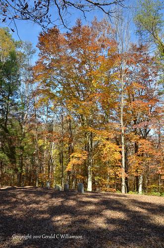 Fall Colors - McNabb Cemetery
