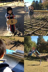 菅刈公園にて (2012/11/10)