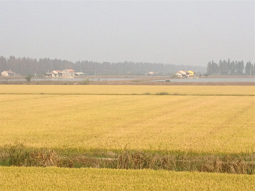 Countryside outside Wushan