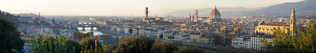 Panoramic view ~ Florence, Italy