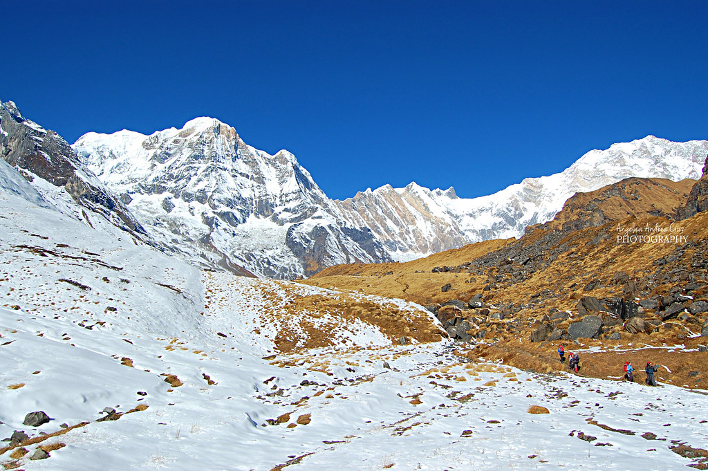 Machhapuchhare Base Camp 8