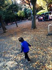 朝散歩 - 恵比寿公園 (2012/11/18)