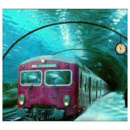 Underwater train in Venice.  Photo via flckr