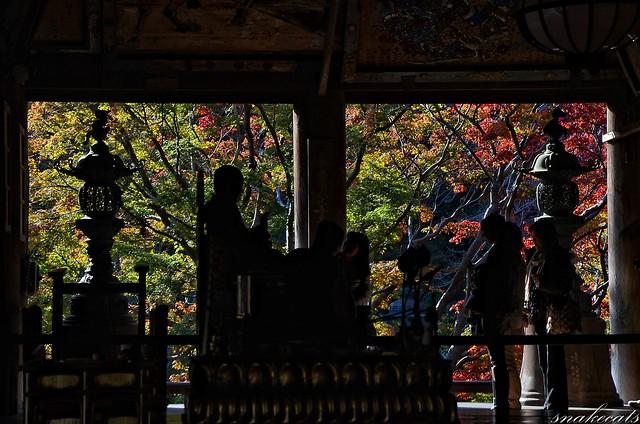 「祈りの舞台」 長谷寺 - 奈良