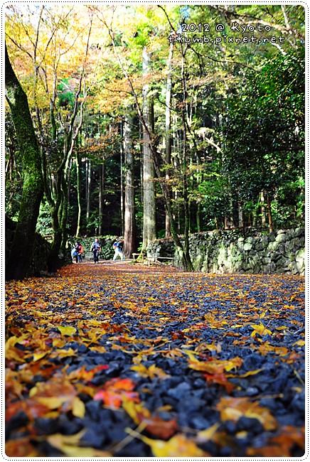 高山寺 (7).JPG