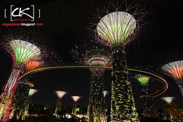 Singapore_0142