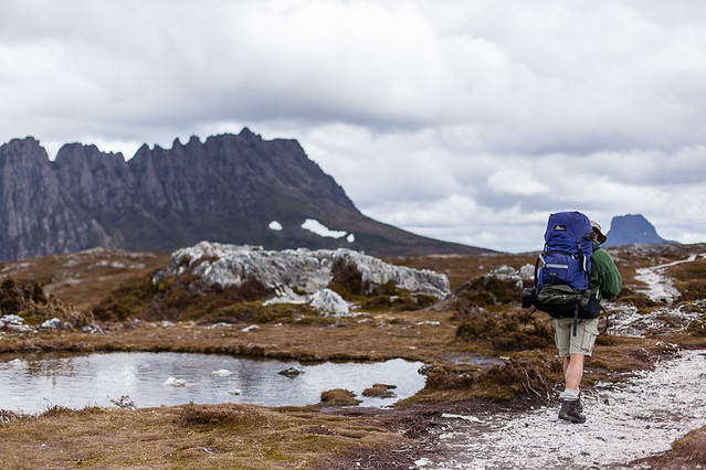 A hiker on the Overland Track, Cradle Mountain National Park