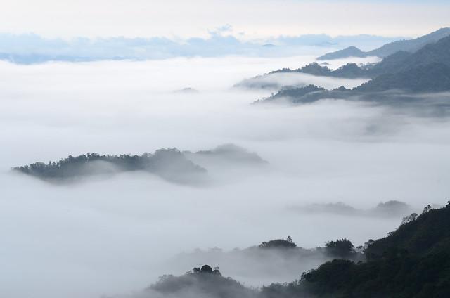 2012.11.24 台中 / 若茵農場
