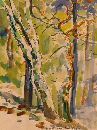 November 2012: Woods by apple-pine
